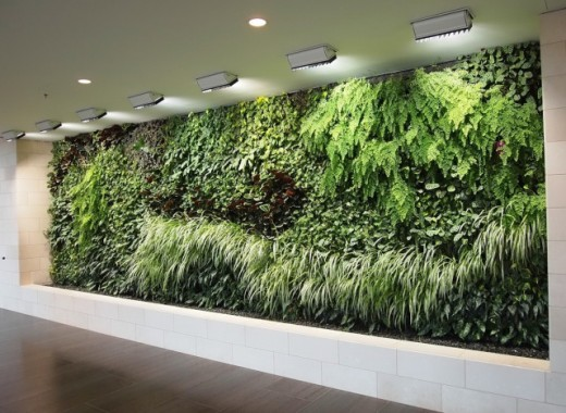 A vertical garden on the inside of a building